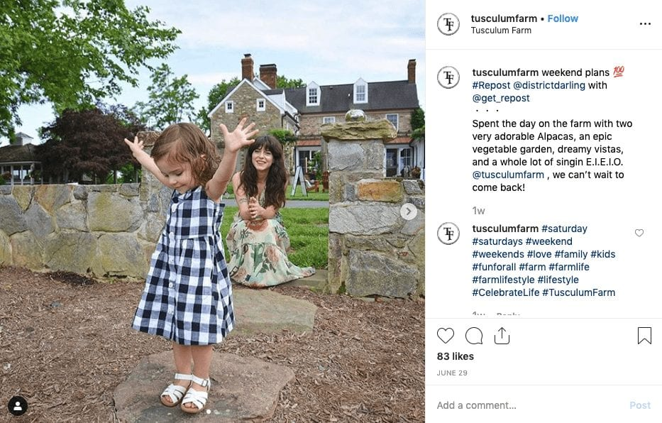 , Instagram Marketing Tips for B&B's & Hotels from an Instagram Influencer, Odysys